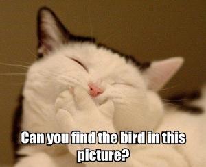 Lol Cats Iz Gud Blog